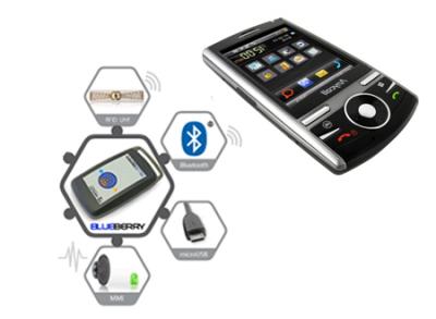 Lettore RFID BlueBerry UHF