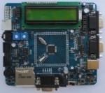 Un prototipo della ARM7 a basso costo