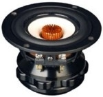 I driver full-range da New Tang Band Speakers