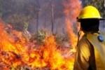 la tecnologia dei nuovi segnalatori anti-incendio