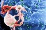 detector per hiv tascabile