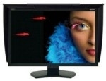 NEC MultiSync Reference 27""