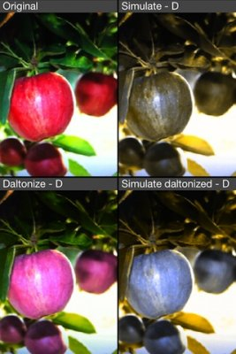 L'app che migliora la percezione dei colori degli utenti daltonici