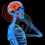 radiazioni dei telefonini provocano il cancro