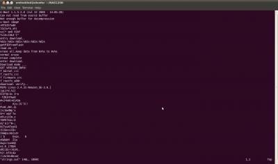 estrarre dati di sistema da un imagine del firmware