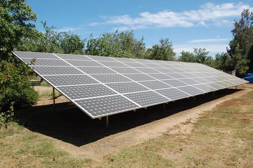 Pannello Solare Disegno City : Dal regno animale nuove implementazioni al fotovoltaico