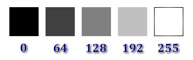 Figura 1: Scala di grigi