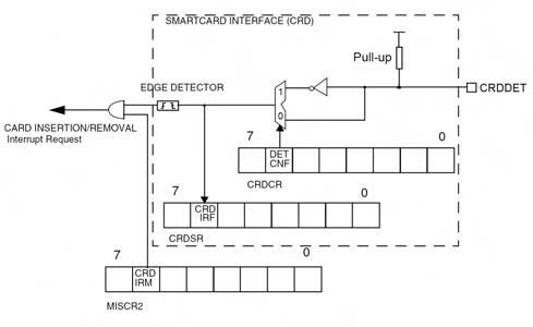 Figura 3. La sezione di riconoscimento della card