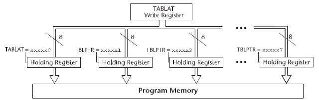 Figura 4. Gli holding register nella fase di Table Write