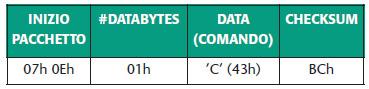 Tabella 8. Comando di cancellazione della sola memoria programma