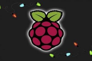 Raspberry Pi black con lucine