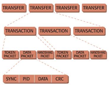 Figura 1. Struttura di una transfer