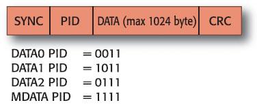 Figura 2.3 . Struttura di un data packet