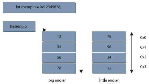 Figura 4. L'allocazione dei dati in memoria nell'uso della endianess