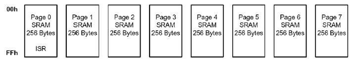 Figura 2. Schema a blocchi delle pagine di memoria