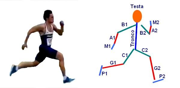 Figura 4: Il corridore è formato da segmenti.
