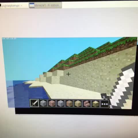 Figura 4: Minecraft