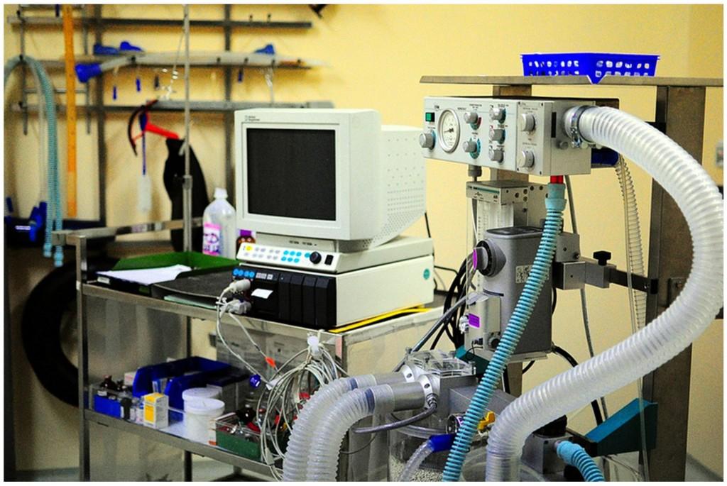 Figura 1: Respiratore ospedaliero.