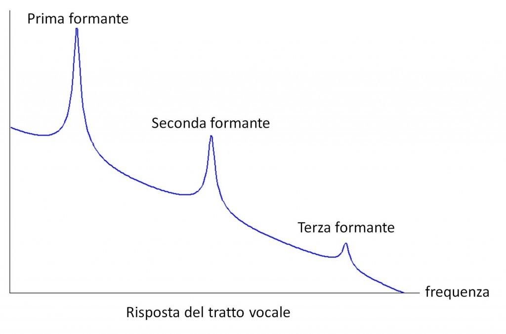 Figura 1b: Risposta del tratto vocale.