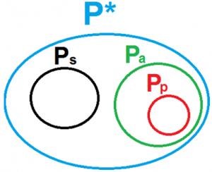 Figura 1. Caratterizzazione dell'insieme P* mediante generazione matriciale