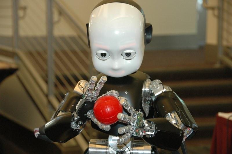 Figura 2: Il robot iClub