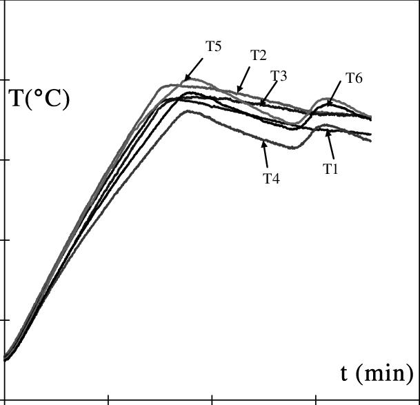 Figura 1: Variazione della temperatura con il tempo per diversi sensori. La temperatura parte da un valore iniziale per poi raggiungere il massimo.