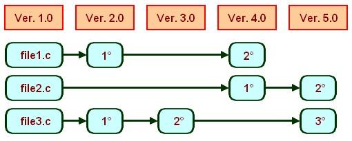 Figura 1: Filosofia di SVN.