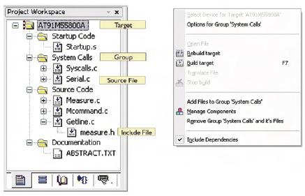 Figura 6. La sezione Project Workspace riassume tutte le informazioni relative al progetto. Facendo click con il tasto destro del mouse è possibile accedere al menu contestuale