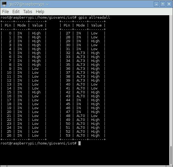 Figura 2: Lo status delle porte del Raspberry Pi