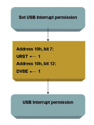 Figura 9: USB Interrupt Permission Setting.
