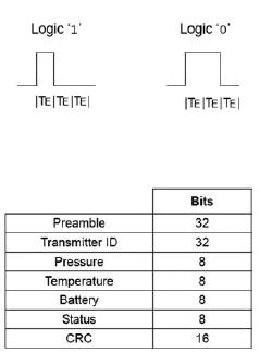 Figura 6: formato di codifica dei dati.