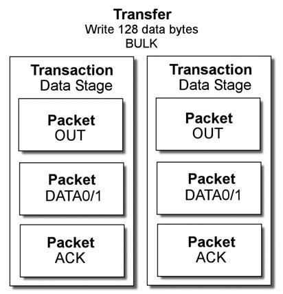 Figura 3: struttura di un trasferimento di tipo Bulk