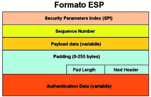 Figura 7: Header ESP.