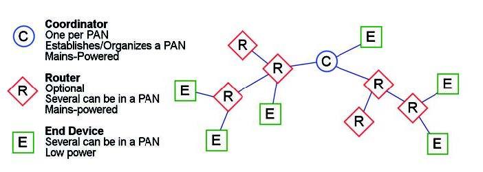 Figura 2: esempio di una tipica rete ZigBee.