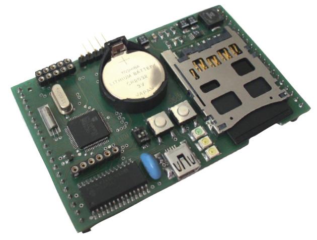 Figura 1: il modulo con ARM7.