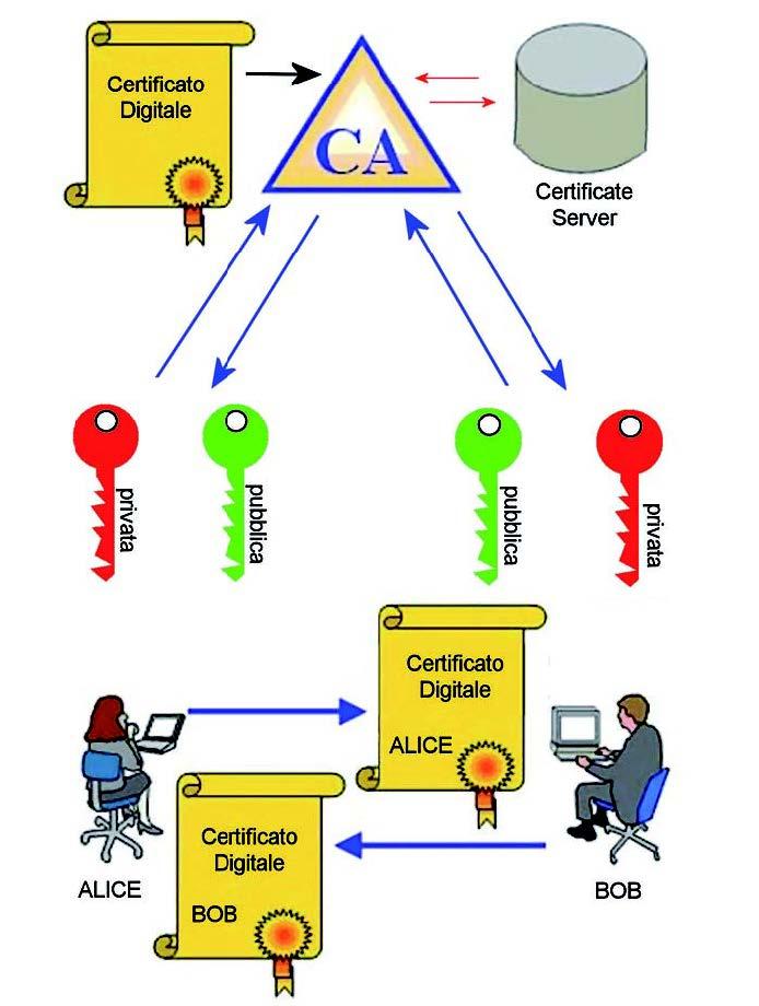 Figura 2: struttura certificato digitale X.509 v3.