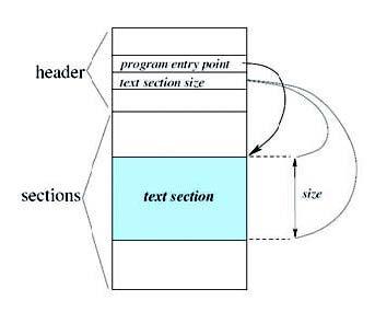 Figura 2: struttura di un file eseguibile.