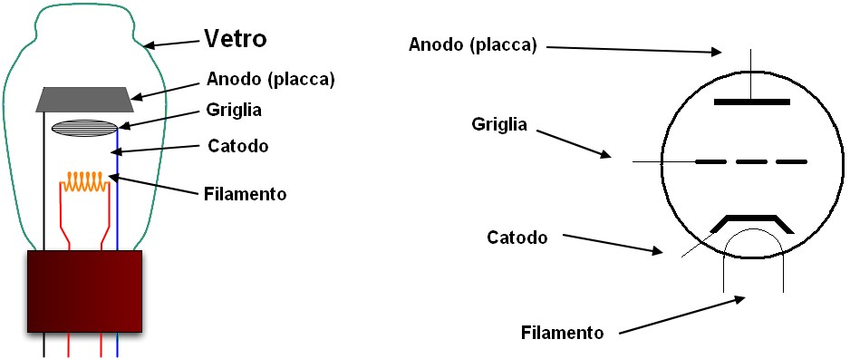 Figura 2: i terminali di un Triodo