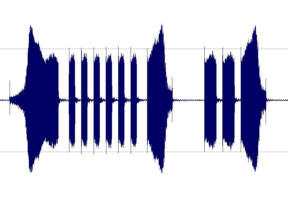 Figura 3: la forma d'onda del suono riprodotto dell'uccellino