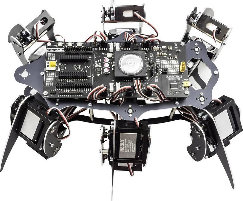 Figura 1: un robot hexapod