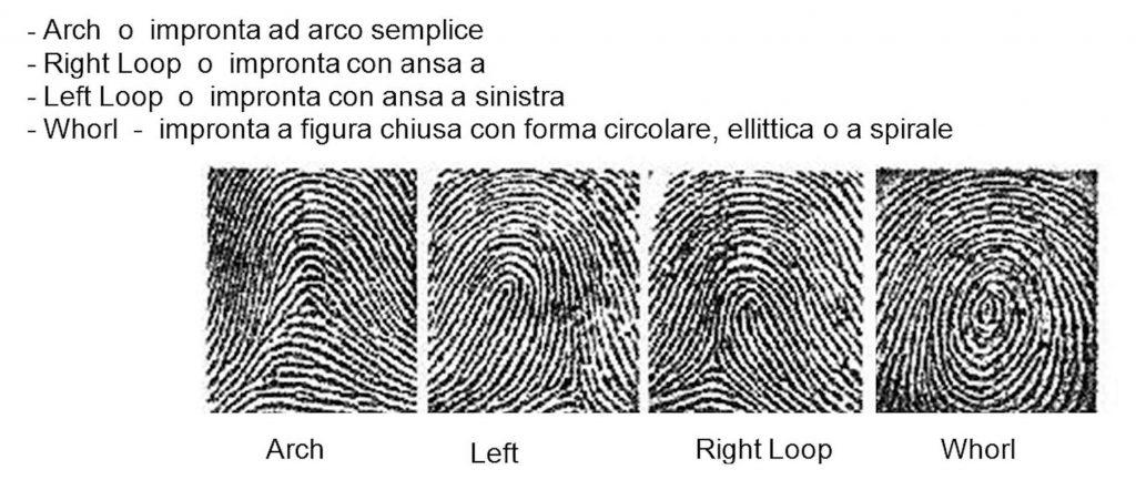 Figura 6: esempi di modelli di classificazione delle impronte.
