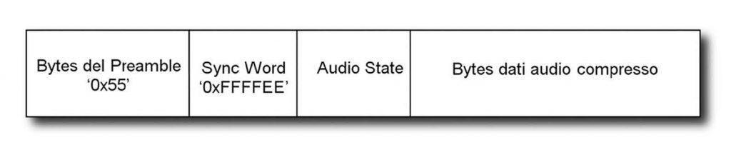 Figura 3: formato del pacchetto dati.