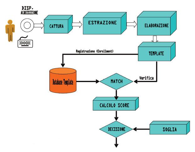 Figura 1: le fasi principali di un processo biometrico.