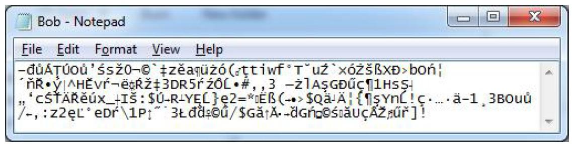 Figura 7: il file BOB.MIR ora è anche crittografato