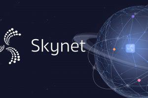 Blockchain e Internet of Things (IoT) sono tra le più importanti tecnologie in grado di guidare e implementare le soluzioni digitali più innovative. In quest'ottica, il progetto Skynet mira a realizzare un chip che combina le proprietà tipiche dell'architettura blockchain con quelle dell'IoT, favorendo la realizzazione di soluzioni interconnesse con un grado di scalabilità e decentralizzazione senza precedenti Introduzione