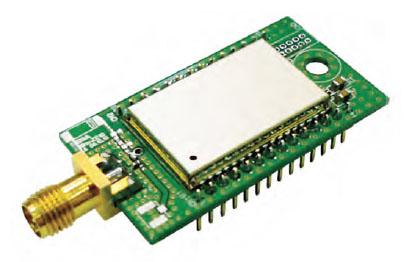 Figura 3: la versione con antenna esterna.