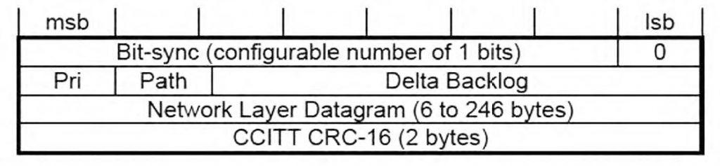 Figura 2: formato di un frame CNP (da [1]).