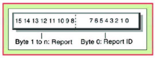 Figura 5: Esempio dei bit Report ID