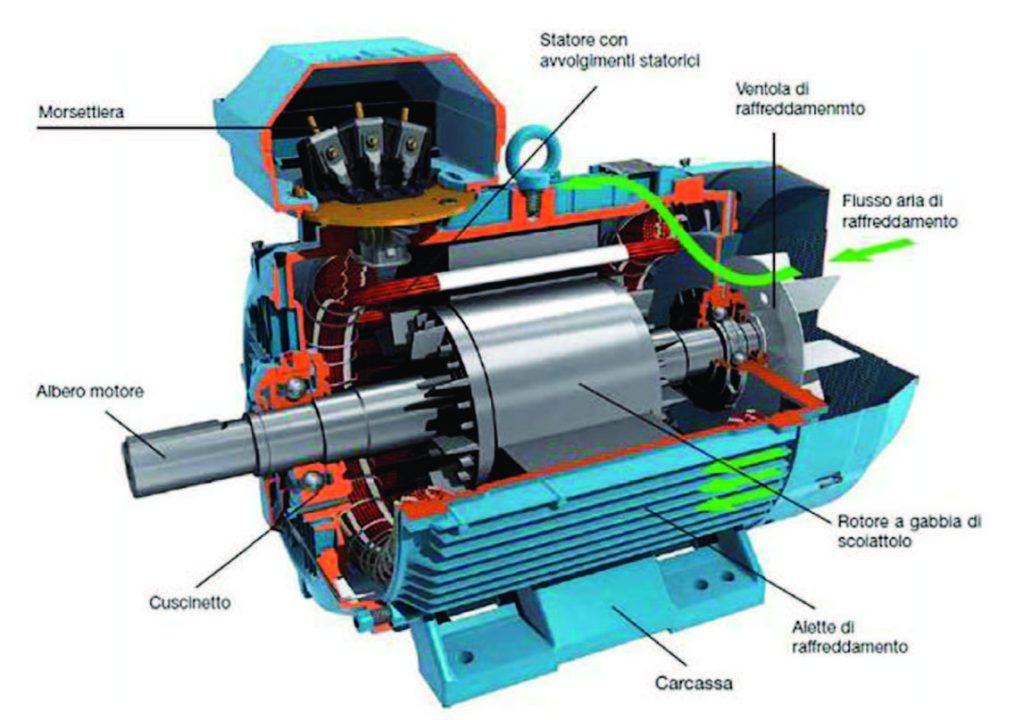 Figura 1: Spaccato di un motore asincrono