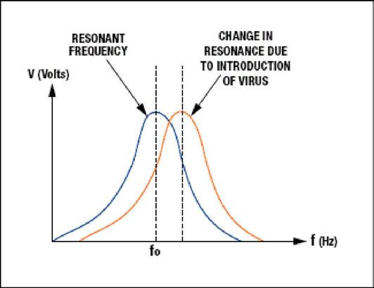 Figura 2: Analisi spettrale stimolando il campione con diverse frequenze.